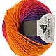 Reggae Ombre - Fuchsienbeet, 100% Schurwolle , Schoppel-Wolle, 50g, 5.95 �
