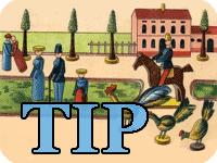 Tip | querbeet und aktuell