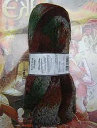 Boots - im Schuhgesch�ft - Farbe 2072T