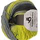 Reggae Ombre - Frische Limonen, Farbe 1700, Schoppel-Wolle, 100% Schurwolle, 5.95 �