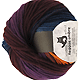 Reggae Ombre - Oxyde, Farbe 1659, Schoppel-Wolle, 100% Schurwolle, 5.95 �